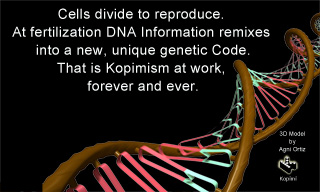 Cells divide to reproduce. At fertilization DNA Information remixes into a new, unique genetic Code.That is #kopimism at work forever and ever